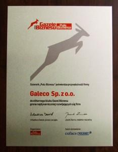 2008-gazele-dyplom